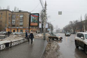 Хорека Воронеж